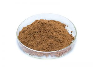 Organic Red Ginseng Extract Powder