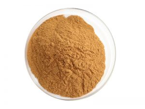 Organic White Tea Extract Powder